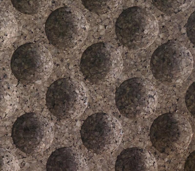 Pluta Expandata Decorativa 3D PointCloud
