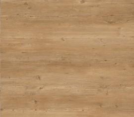 WISE Mountain Oak SRT