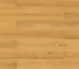 WISE Golden Prime Oak HRT