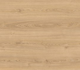 Wood Resist ECO Royal Oak