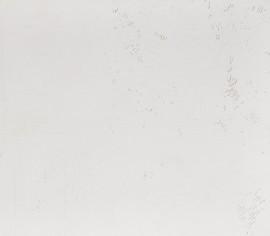 White Cement Standard