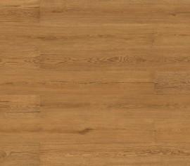 Parchet Wood Essence Rustic Forest Oak